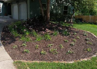 Perennial Garden Beds Newly Planted