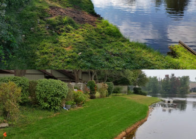 Shoreline Restoration Before & After